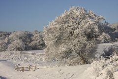 Winter Snow landscape, Cardiff, UK royalty free stock images