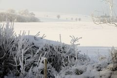 Winter snow landscape haze. Or fog with trees. winter day at christmas view of farming countryside with foggy weather royalty free stock photos