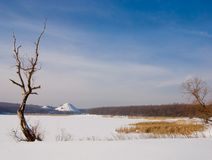 Winter snow landscape with lonely tree Stock Images