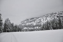 Winter Snow landscape. A winter mountain landscape in Mazama, Washington Stock Photography