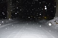 Winter Snow royalty free stock photos