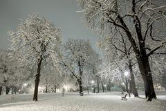 Winter snow park Stock Photos