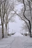 Winter, snow, pedestrian bridge, fog. Winter landscape, a lot of snow, the trees are covered with snow, the view of the pedestrian bridge, leaving in the fog Royalty Free Stock Image