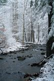 Winter Snow in Pennsylvania. Snowy woods and stream in Pennsylvania Royalty Free Stock Images