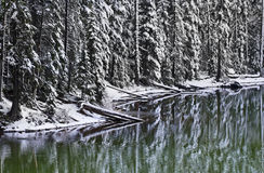 Winter Snow Reflections At Devil's Lake Oregon stock image