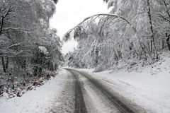 Winter snow and a road going through forest Stock Image