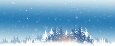 Winter Snow Scape. Winter holiday christmas greeting background with snow fir trees and blurry lights Stock Image