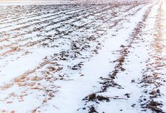 Winter snow scene on arable farm land Royalty Free Stock Image