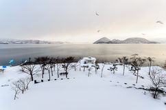 Winter and Snow Scene of Lake, in Japan Royalty Free Stock Photos