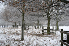 Winter snow scene in Nottinghamshire, UK. A snow covered landscape in a English country park Royalty Free Stock Image