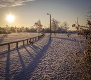 Winter snow scene park season Royalty Free Stock Photography