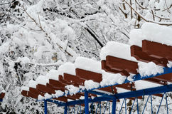 Winter Snow Royalty Free Stock Images