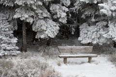 Winter snow scenery stock photos