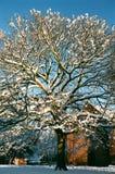 Winter Snow in Shrewsbury, UK Royalty Free Stock Images