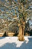 Winter Snow in Shrewsbury, UK Royalty Free Stock Image