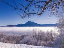 Winter, Snow, Sky, Nature stock photo