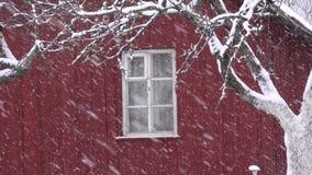 Winter snow snowflake snowing near farm house window stock video