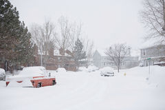 Winter Snow Storm Royalty Free Stock Images