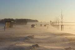 Winter snow storm Royalty Free Stock Photography
