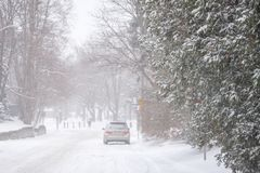 Winter snow storm in Toronto in February. Streets and trees covered with snow during winter snow storm in Toronto in February royalty free stock photography