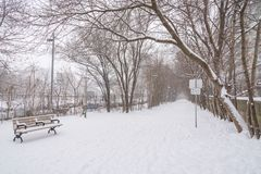 Winter snow storm in Toronto in February. Streets and trees covered with snow during winter snow storm in Toronto in February stock images