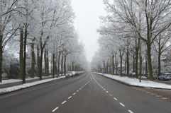 Winter snow on street Royalty Free Stock Photo