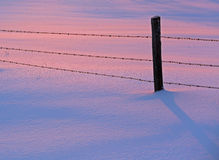 Winter Snow Sunset Pink Blue Fence Royalty Free Stock Photo