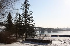 Winter, Snow, Tree, Sky stock photos