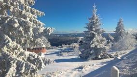 Winter, Snow, Tree, Sky royalty free stock photos