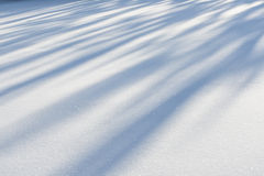 Winter snow Stock Photography