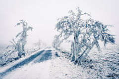 Winter snowbound road covered with snow Royalty Free Stock Photo