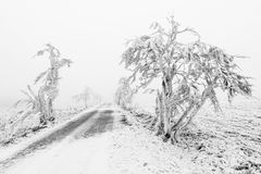Winter snowbound road covered with snow and rime Stock Images