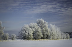 Winter snowdrifts, Russian Winter Royalty Free Stock Photography