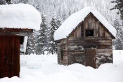 Winter snowfall Royalty Free Stock Photo