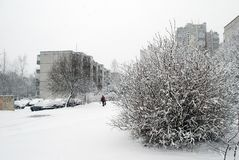 Winter snowfall in capital of Lithuania Vilnius city Seskine district Royalty Free Stock Images