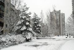 Winter snowfall in capital of Lithuania Vilnius city Seskine district Royalty Free Stock Photo