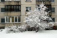 Winter snowfall in capital of Lithuania Vilnius city Seskine district Stock Photography