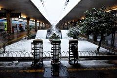 Winter snowfall in Florence VI