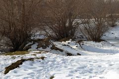 Winter snowfall this month. The Borcea arm is covered with ice and snow Royalty Free Stock Photo
