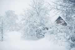 Winter snowfall in the village. Snowy collapse Royalty Free Stock Photography