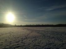 Winter snowfield. Footprints in the snow, blazing sun, blue sky, trees on horizon Stock Images