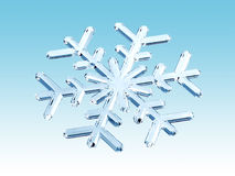 Winter snowflake royalty free stock image