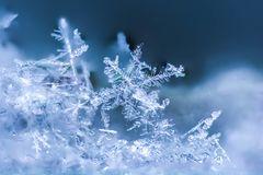 Winter Snowflake macro shot. Snowflake macro shot isolating one flake in blue. Winter background Royalty Free Stock Photography