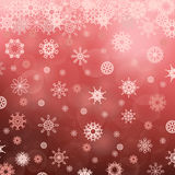 Winter Snowflake Red Pattern Stock Image