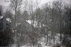 Winter snowing scene with houses and trees in background. During snow storm stock photo