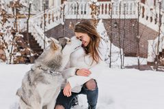 Winter snowing time on street of cute husky dog kissing charming joyful young woman. Lovely moments, real friendship stock photos