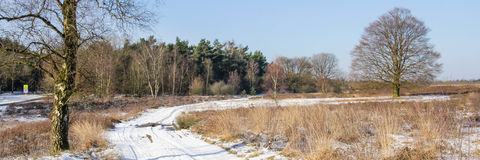Winter snowlandscape panorama Royalty Free Stock Image