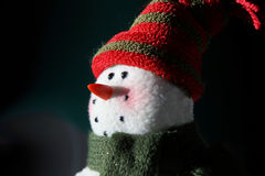 Winter Snowman in Moonlight Royalty Free Stock Images