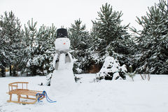 Winter, snowman and sledge. And trees as a background Royalty Free Stock Image