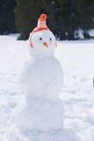 Winter snowman Royalty Free Stock Image